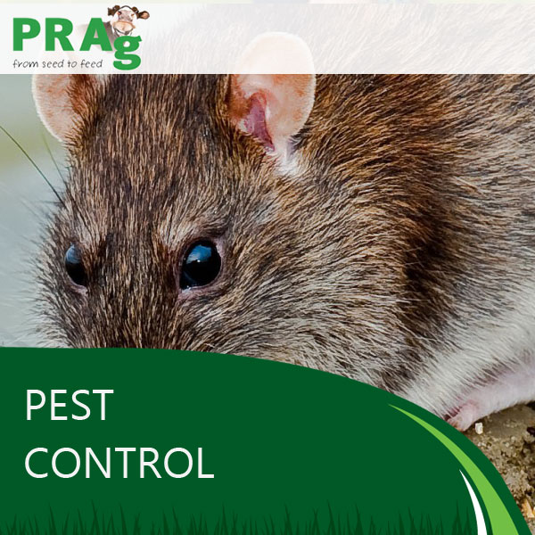 Pest Control Services from PRAg