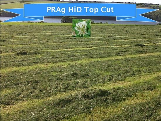 Hi-D Top Cut