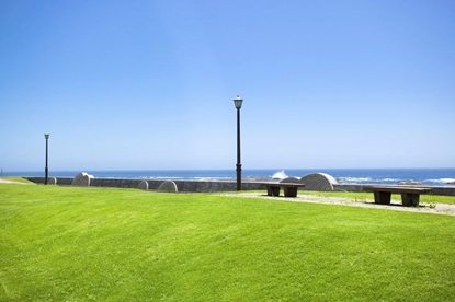 Coastal Lawn Seed