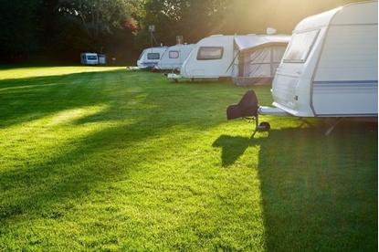 Caravan Park Pro Lawn Seed