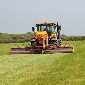 Picture for category Agricultural Grass Seed