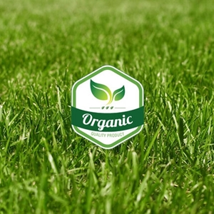 Picture for category Organic Grass Seed